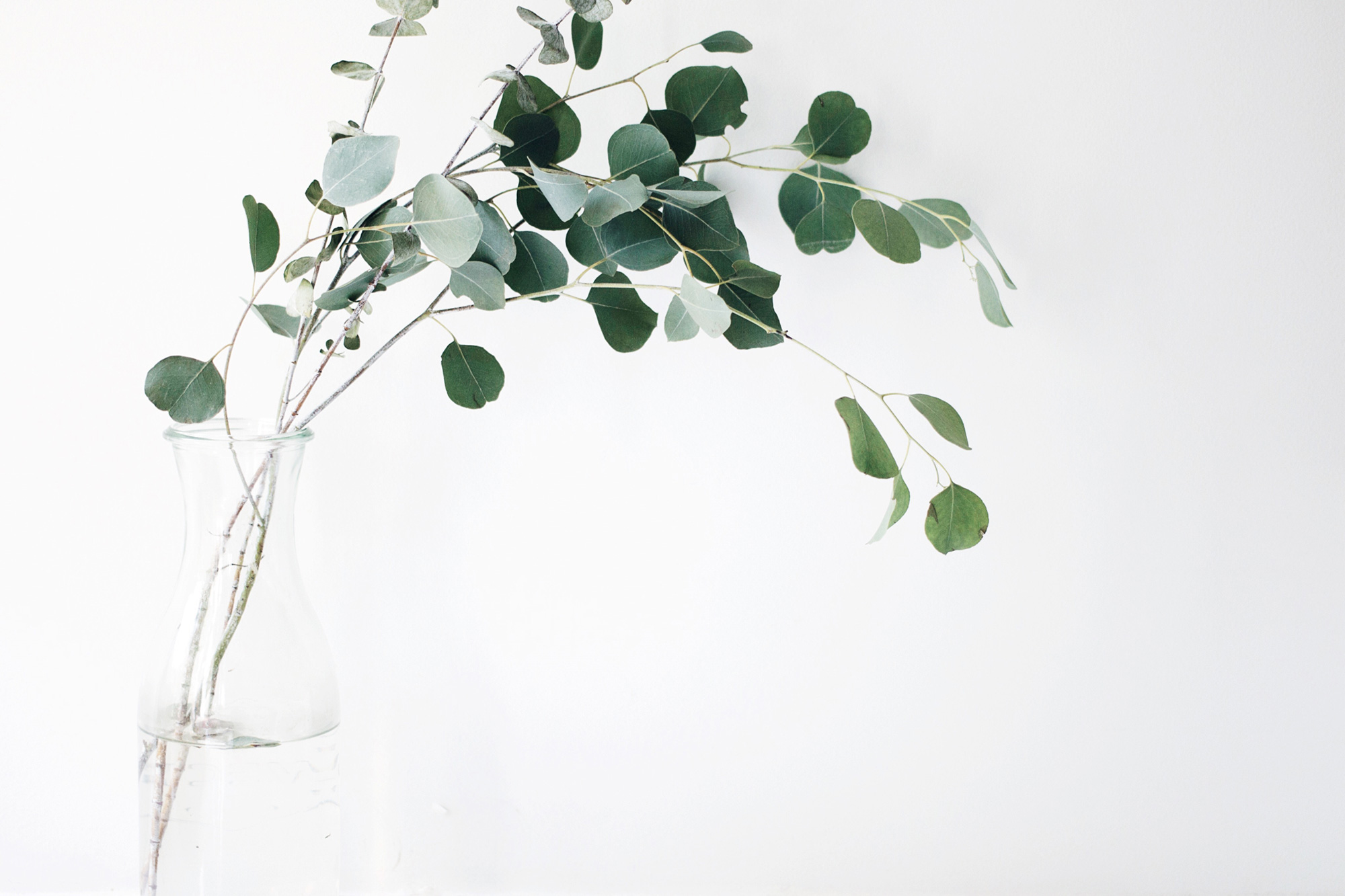 Grabpflege – Vase mit grünen Zweigen